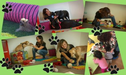 Vieni a scoprire la Pet therapy con Little Star e il laboratorio: Un cane per amico